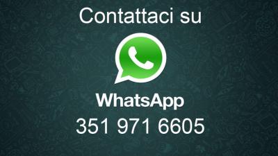 pegaso numero whatsapp