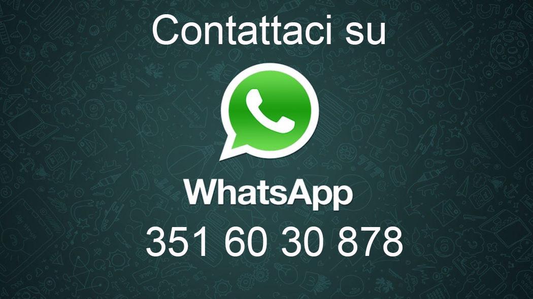 Pegaso contatti